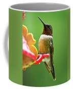 Rainy Day Hummingbird Coffee Mug