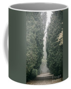 Rainy Gloomy Alley In Park Coffee Mug