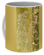 Raised Bed Vegetable Gardens Coffee Mug
