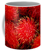 Rambutan Coffee Mug