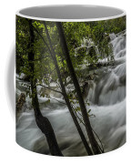 Rapids In Forest  Coffee Mug