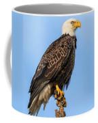 Raptor Coffee Mug