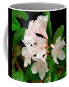 Rare Florida Beauty - Chapmans Rhododendron Coffee Mug