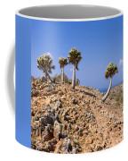 Rare Palm Tress Curacao Coffee Mug