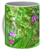 Rare Parry Primrose Spring Inlet Trampas Lake Nm Coffee Mug
