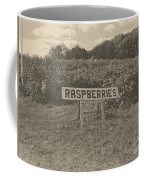 Raspberry Fields  Coffee Mug