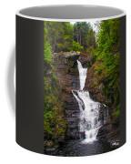 Raymondskill Falls Coffee Mug