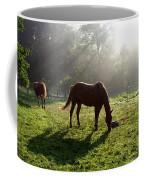 Rays From Heaven Coffee Mug