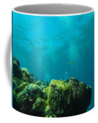Rays Of Light Coffee Mug