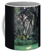 Rays Of Sunlight Coffee Mug