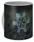 Real Snowflake - Slight Asymmetry New Coffee Mug