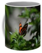 Really Elegant Oak Tiger Butterfly In Nature Coffee Mug