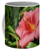 Really Pretty Blooming Pink Daylily In A Garden Coffee Mug