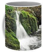 Reany Falls 1 Coffee Mug