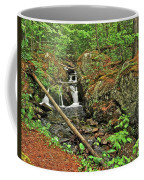 Reany Falls 3 Coffee Mug