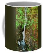 Reany Falls 4548 Coffee Mug
