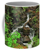 Reany Falls 5 Coffee Mug