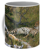 Reclining Cheetah 2 Coffee Mug
