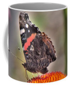 Red Admiral Butterfly On Coneflower              July              Indiana Coffee Mug