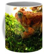 Red American Toad Coffee Mug