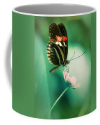 Red And Black Butterfly On White Flower Coffee Mug