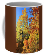 Red And Golden Aspens In Dillon Co Coffee Mug