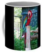Red  And  Green Macaw         Zoo      Indiana Coffee Mug