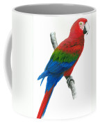 Red And Green Macaw Coffee Mug