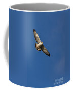 Red-backed Hawk Coffee Mug