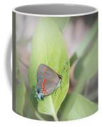 Red-banded Hairstreak Butterfly Coffee Mug