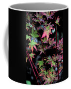 Red Bark Maple  Coffee Mug