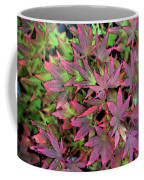 Red Bark Maple Leaves  Coffee Mug