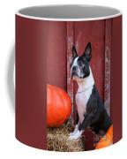 Red Barn Boston Coffee Mug