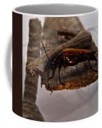 Red Beetle At Twlight Coffee Mug
