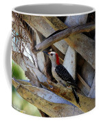 Red-bellied Woodpecker Hides On A Cabbage Palm Coffee Mug