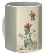 Red Bergamot In A Landscape, Aert Schouman Surroundings Of, C. 1750 - C. 1775 Coffee Mug
