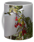 Red Berries On A White Fence Coffee Mug