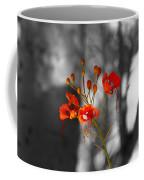Red Bird Of Paradise Coffee Mug