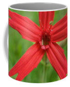 Fire Pink Coffee Mug