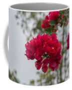 red bougainvillea in Laguna Guerrero Coffee Mug