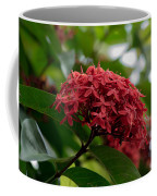 Red Bouquet 9 Coffee Mug