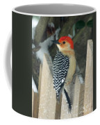 Red Breasted Woodpecker On Fence Coffee Mug
