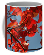 Red Brown And Blue Coffee Mug