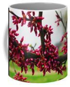 Red Buds  Coffee Mug