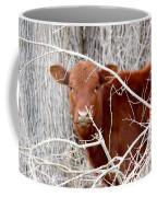 Red Calf  Hideaway Coffee Mug