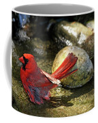 Red Cardinal Bathing Coffee Mug