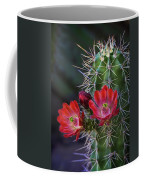 Red Claret Cup Cactus  Coffee Mug