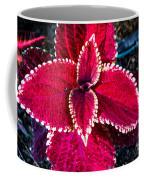 Red Coleus Coffee Mug