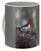 Red Crested Posing Coffee Mug
