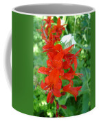 Red Crocosmia Lucifer Coffee Mug
